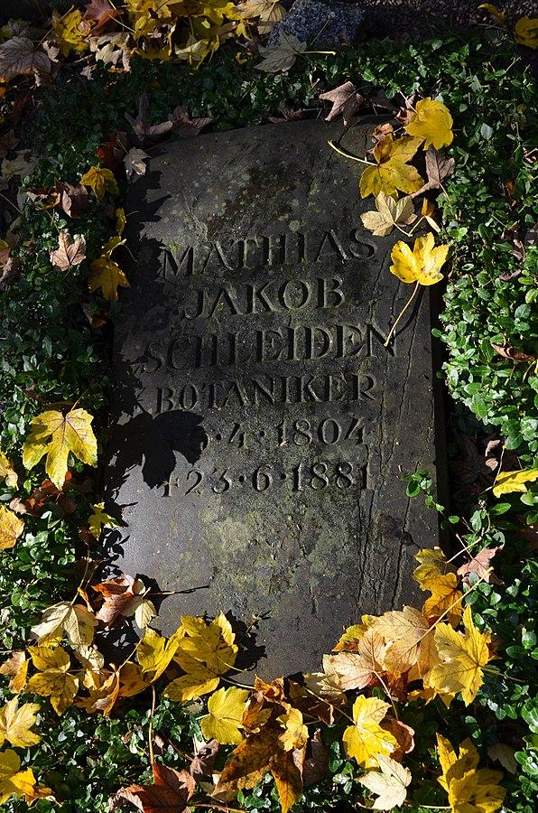 Matthias Jakob Schleiden Grave