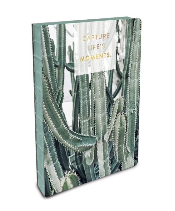 Cactus Journal by Studio Oh!