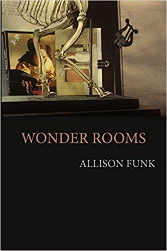 Wonder Rooms by Allison Funk