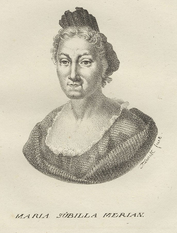 Maria Sibylla Merian from book
