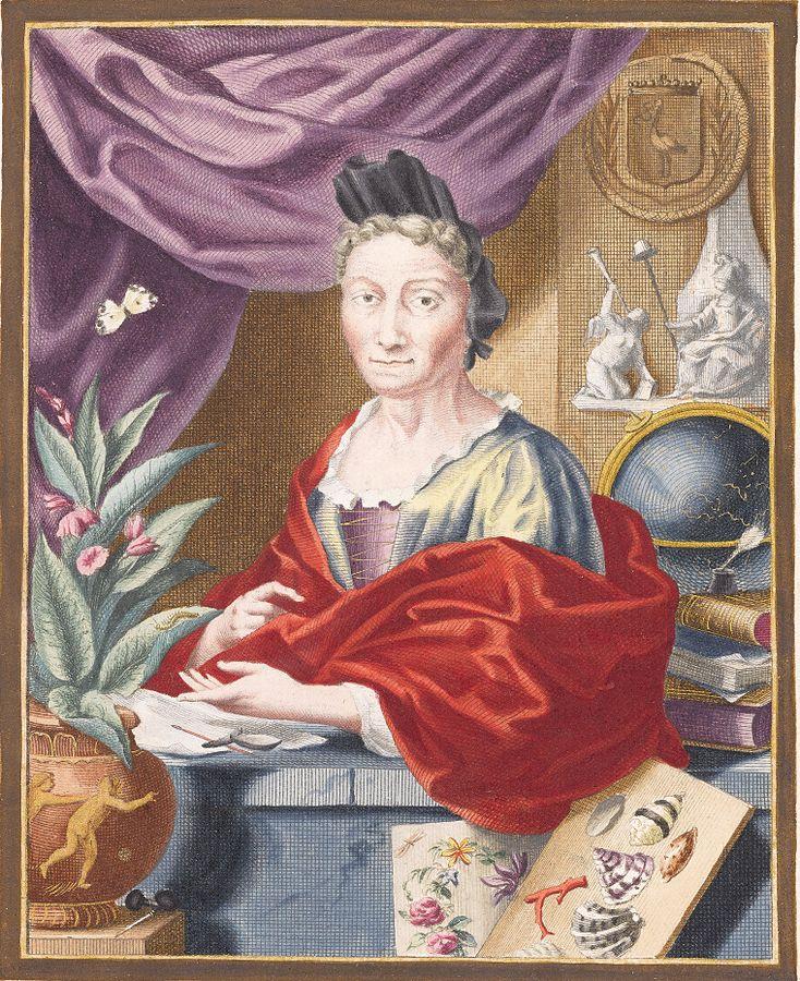 Maria Sibylla Merian Portrait