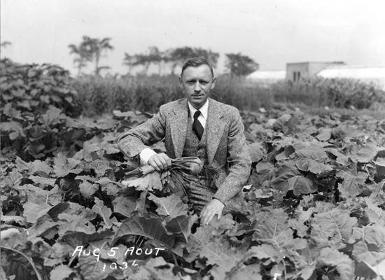 Henry Teuscher