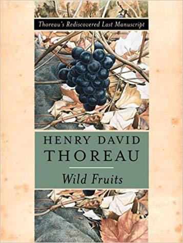 Wild Fruits by Bradley P. Dean