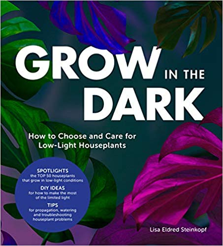 Grow in the Dark by Lisa Eldred Steinkopf