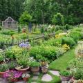Time to Enjoy Your Garden