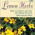 Lemon Herbs by Ellen Spector Platt