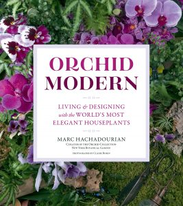 Orchid Modern by Marc Hachadourian