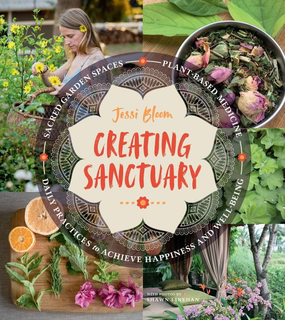 Creating Sanctuary by Jessi Bloom