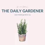 20200101 The Daily Gardener Album Cover