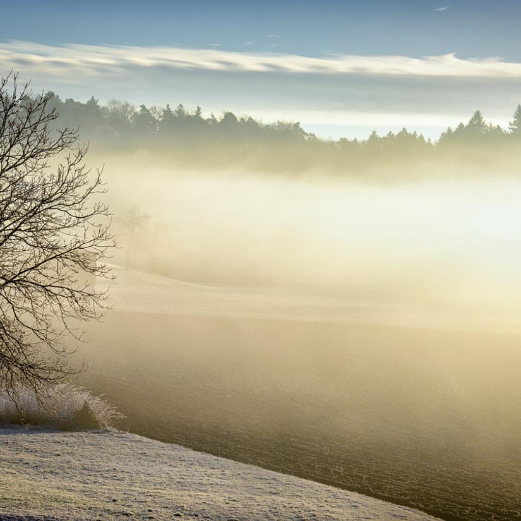 A Winter Dawn