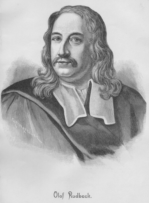 Olaus Rudbeck