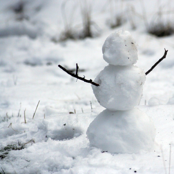 The Sun Came Out and the Snowman Cried