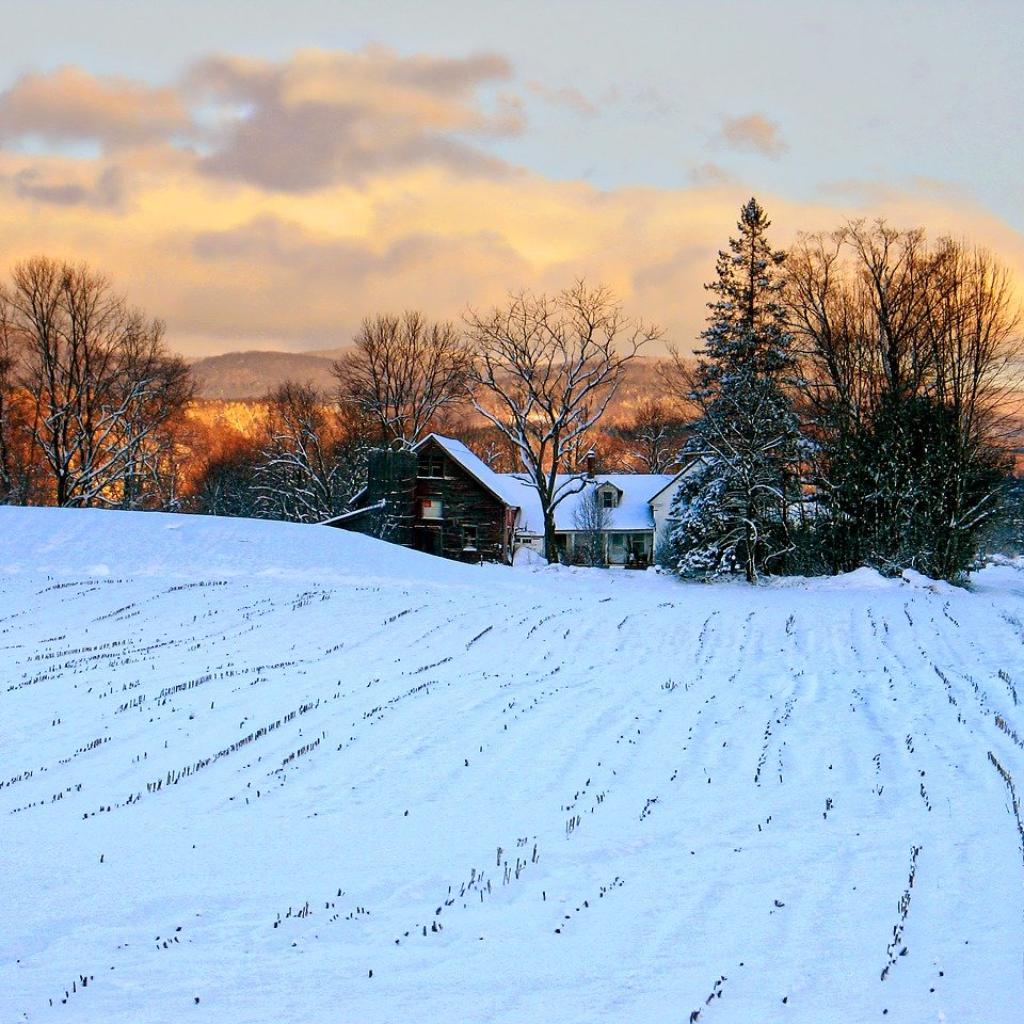 Winter Passes