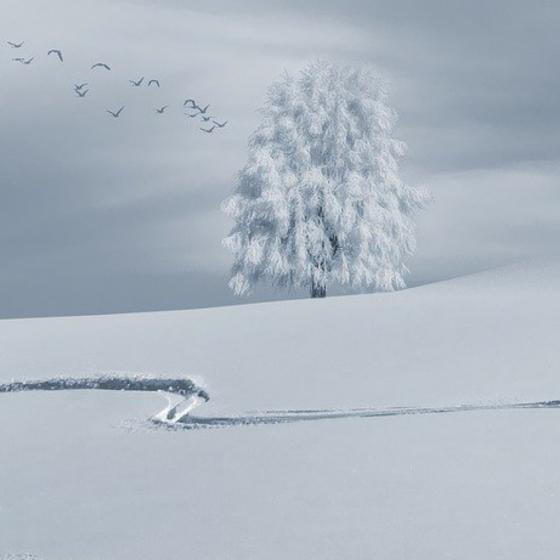 Deep Sleeps the Winter