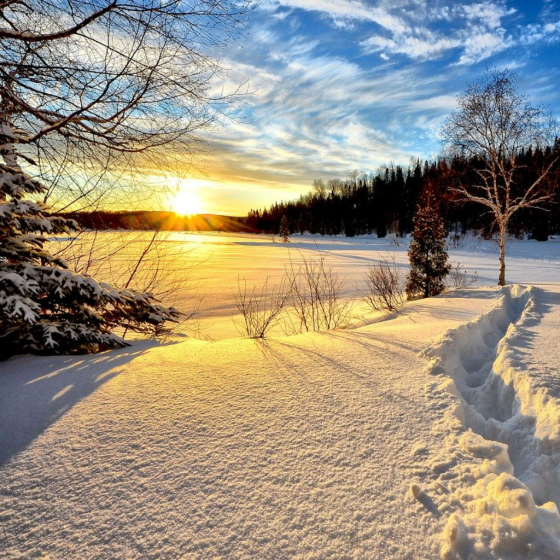 February Twilight