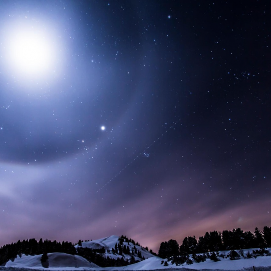 In Winter, the Stars Seem to Have Rekindled Their Fires
