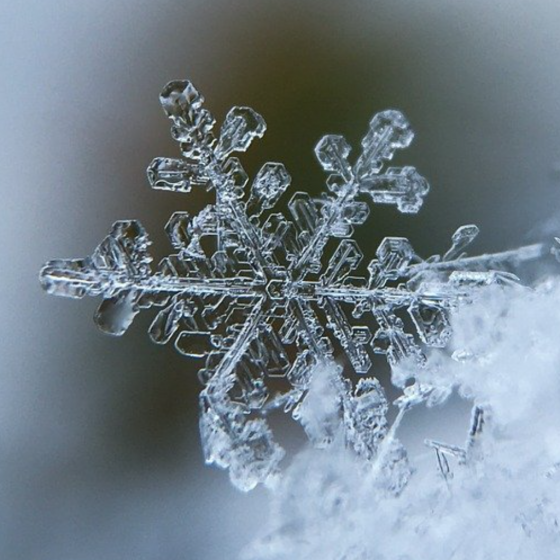 To Appreciate the Beauty of a Snowflake