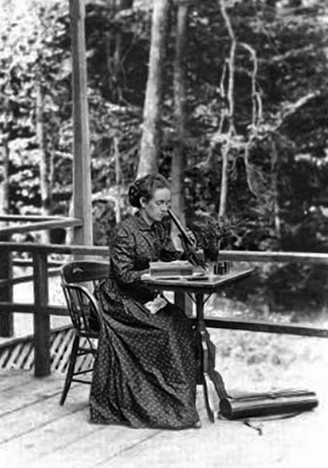 Elizabeth Gertrude Knight Britton