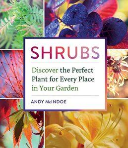 Shrubs by Andy McIndoe