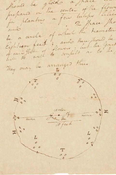 Hamilton's Garden Sketch
