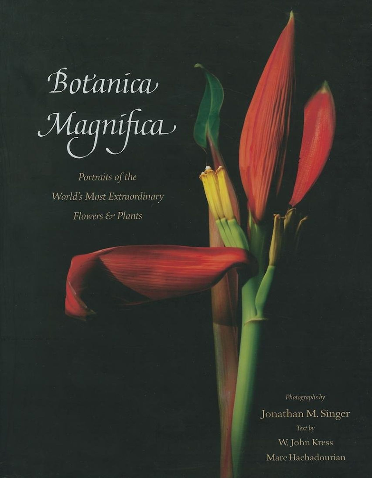 Botanica Magnifica by W. John Kress and Jonathan M. Singer