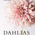 Dahlias by Naomi Slade
