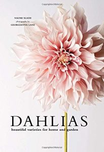 Dahlias by Naomi Slade