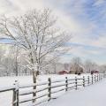 Winter a Lingering Season