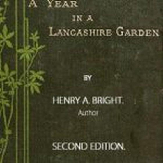 Henry Arthur Bright
