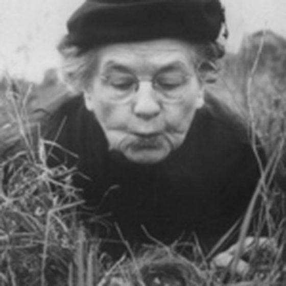 Margaret Morse Nice