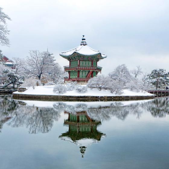 Gardens in Winter by Elizabeth Lawrence