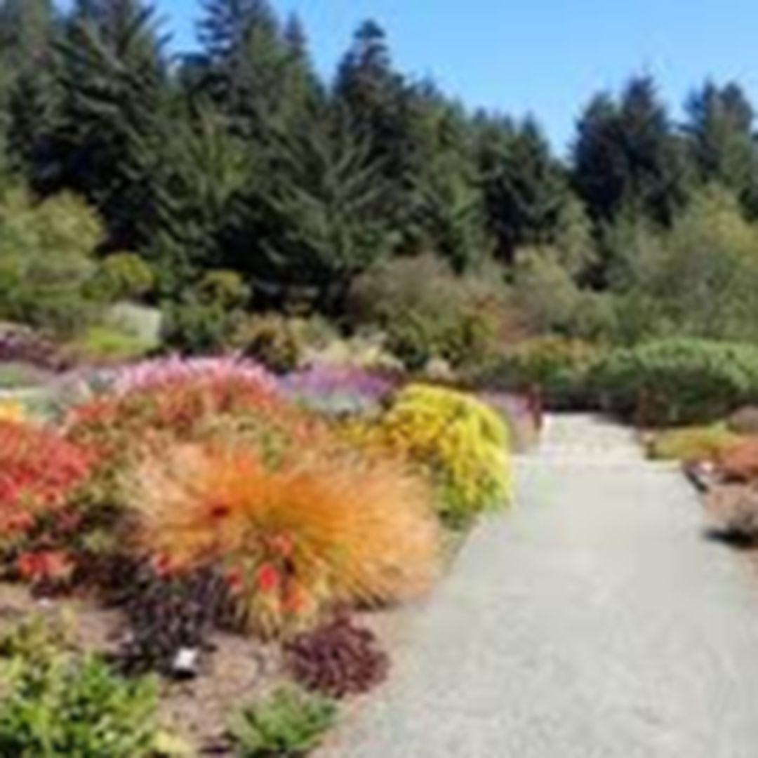 The Humboldt Botanical Garden