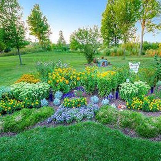 Vermont's Flora