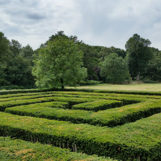 Patterns in the Garden
