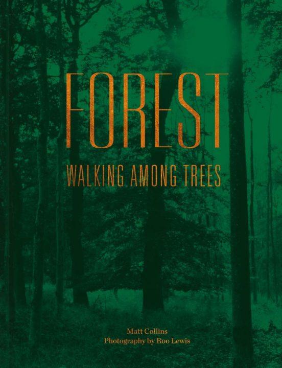 Forest by Matt Collins