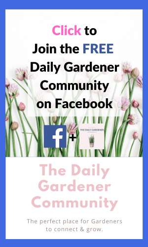 The Daily Gardener Facebook Group (5)