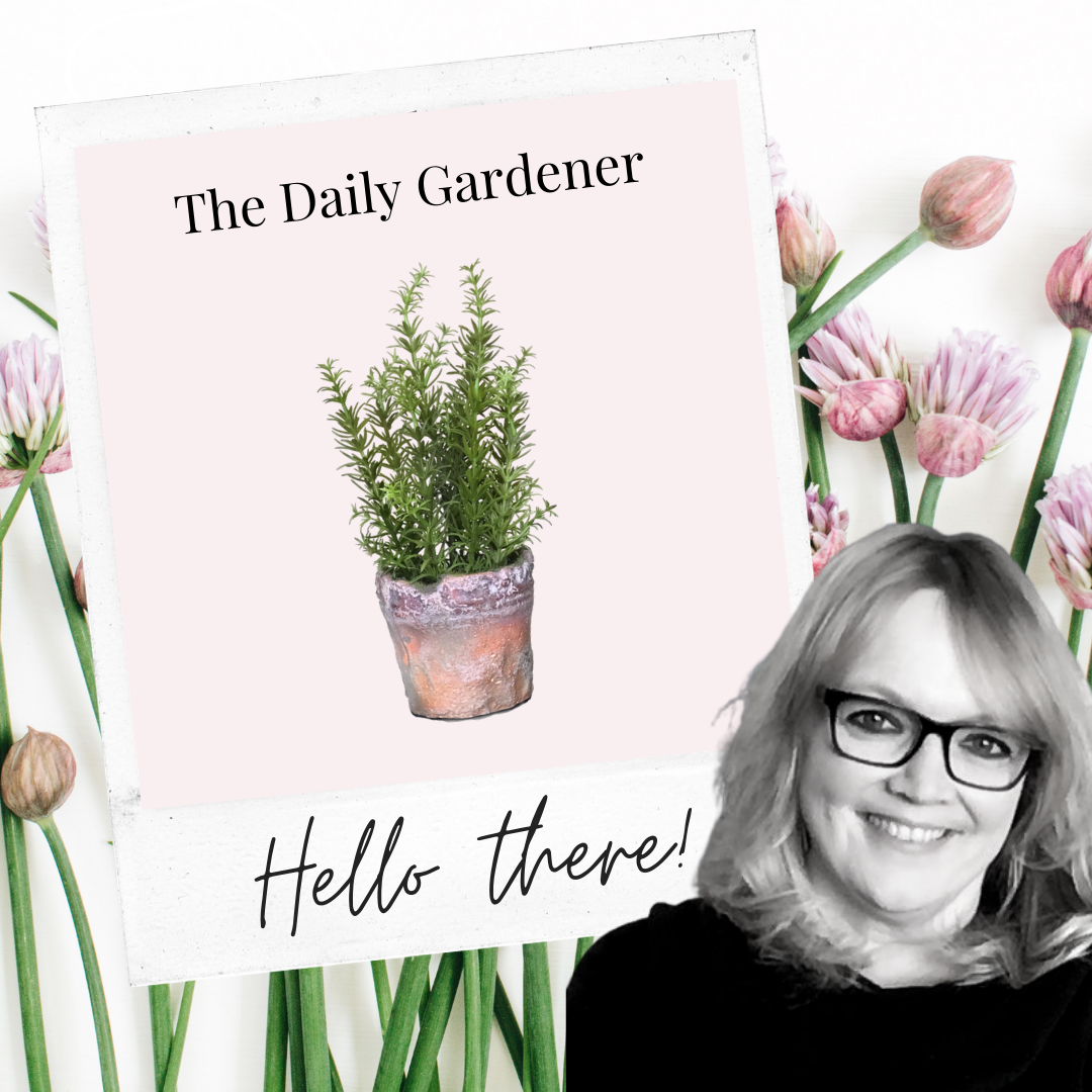 The Daily Gardener Hello Album