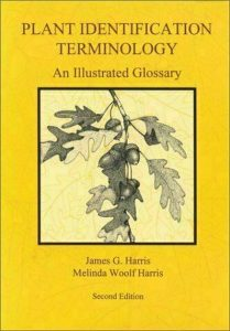 Plant Identification Terminology by James G. Harrison