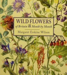 Wild Flowers of Britain by Margaret Erskine Wilson