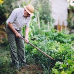 If All Men Were Gardeners